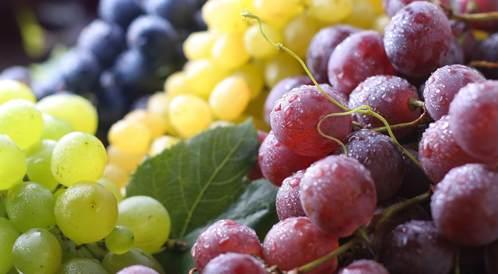 تفسير حلم العنب الأخضر أو الأحمر للعزباء و للمتزوجة زيادة