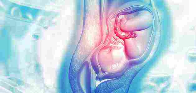 اشياء تساعد على فتح الرحم بسرعه وأهم المواد الغذائية زيادة