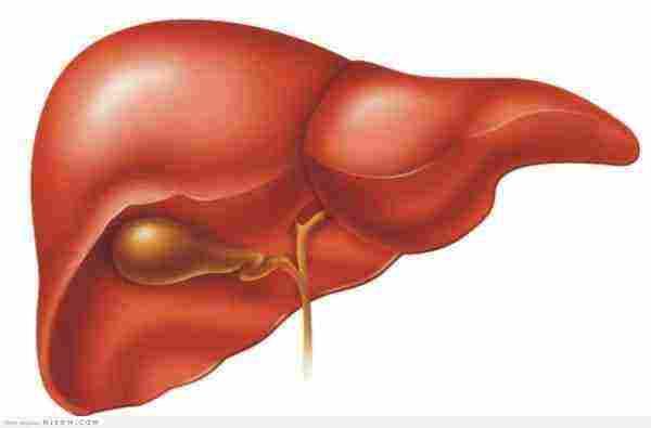 الوقاية من غيبوبة الكبد