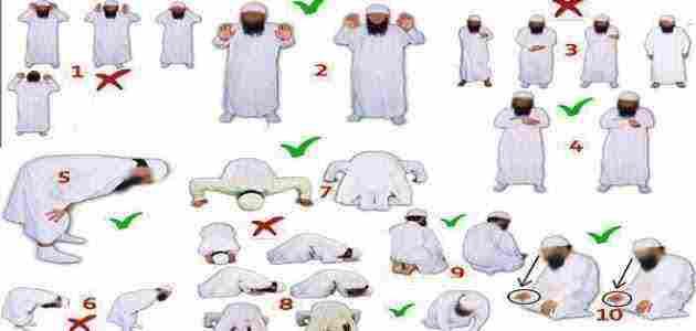 كيفية الصلاة الصحيحة من التكبير إلى التسليم وشروط أدائها زيادة