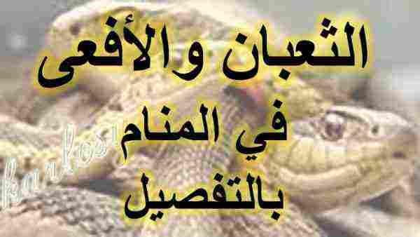 تفسير رؤية الثعابين الصغيرة في المنام للمرأة المتوزوجة والعزباء زيادة
