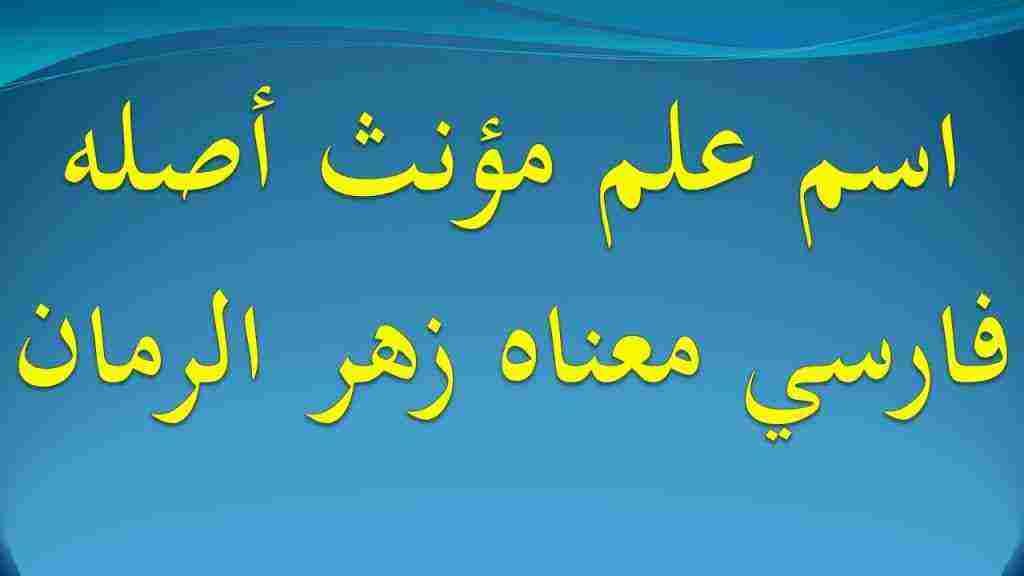 اسم علم مؤنث اصله فارسي ومعناه زهر الرمان زيادة