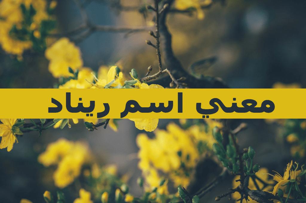 ما معنى اسم ريناد وأجمل الأسماء العربية التي تبدأ بحرف الراء زيادة