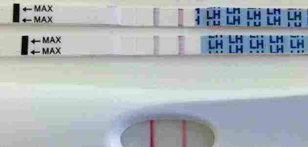 اختبار التبويض المنزلي والحمل بولد وطريقة استخدامه زيادة