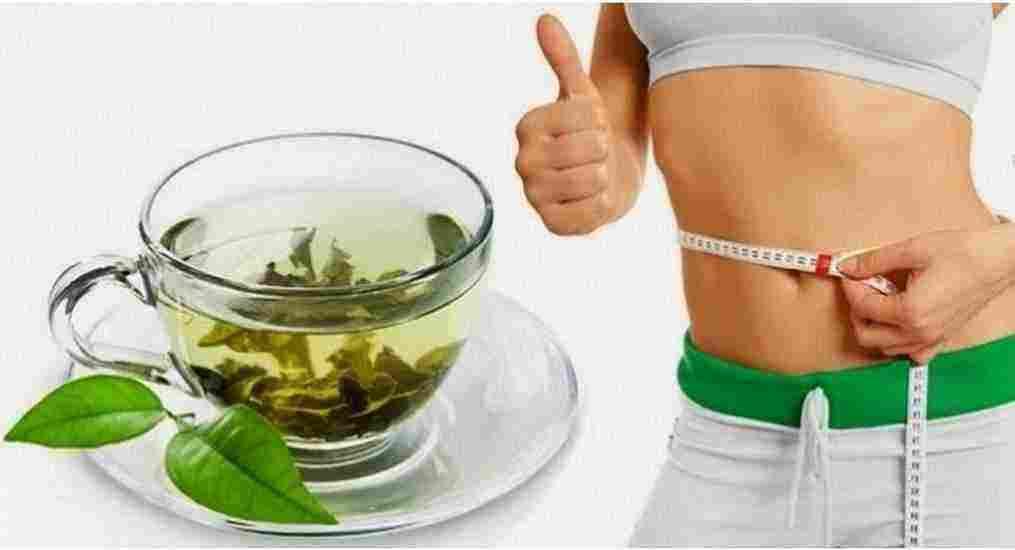 رومانسي أيمان سيى الآفاق فوائد الشاي الاخضر للرجيم قبل النوم Dsvdedommel Com