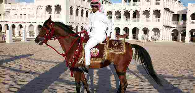 اول من ركب الخيل من الانبياء وأهمية الخيول عند العرب زيادة