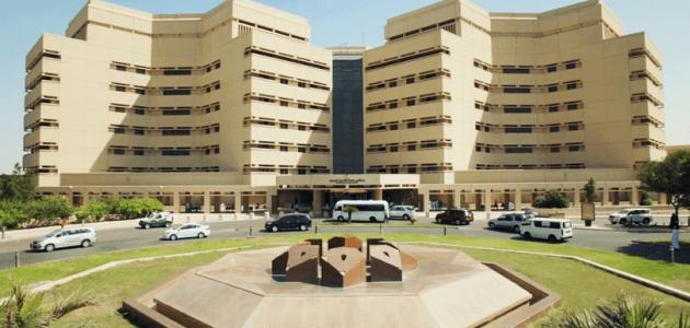 تقديم جامعة الملك عبدالعزيز وشروط القبول بجامعة الملك عبدالعزيز والمستندات المطلوبة