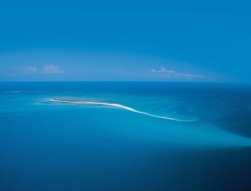 أين يقع المحيط الهادي وكم عدد أنواع الأسماك في المحيط الهادئ زيادة