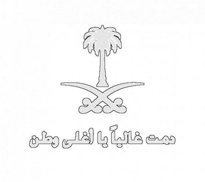 رسومات عن اليوم الوطني بقلم الرصاص 1442 وبعض الأفكار حول رسومات اليوم الوطني السعودي زيادة