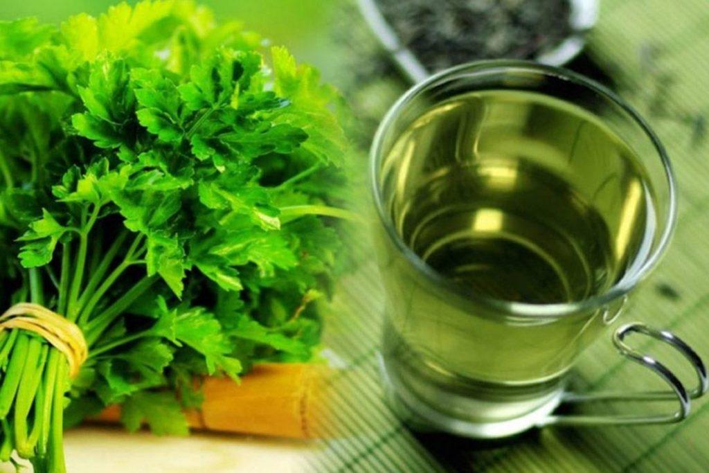 علاج غسيل الكلى بالأعشاب وطريقة التحضير والاستعمال في المنزل زيادة