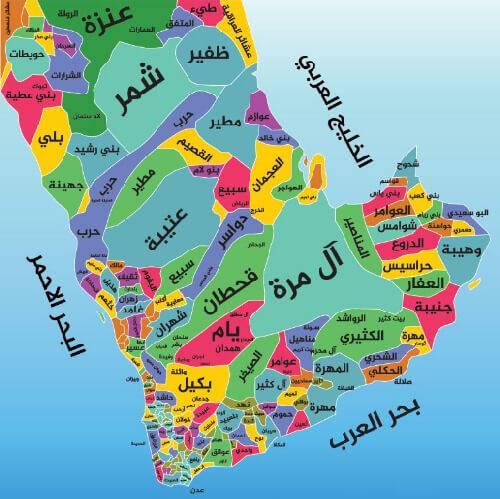 شجرة قبائل العرب بالترتيب وأهم ما تشتهر به وأشهر قبائل المملكة زيادة
