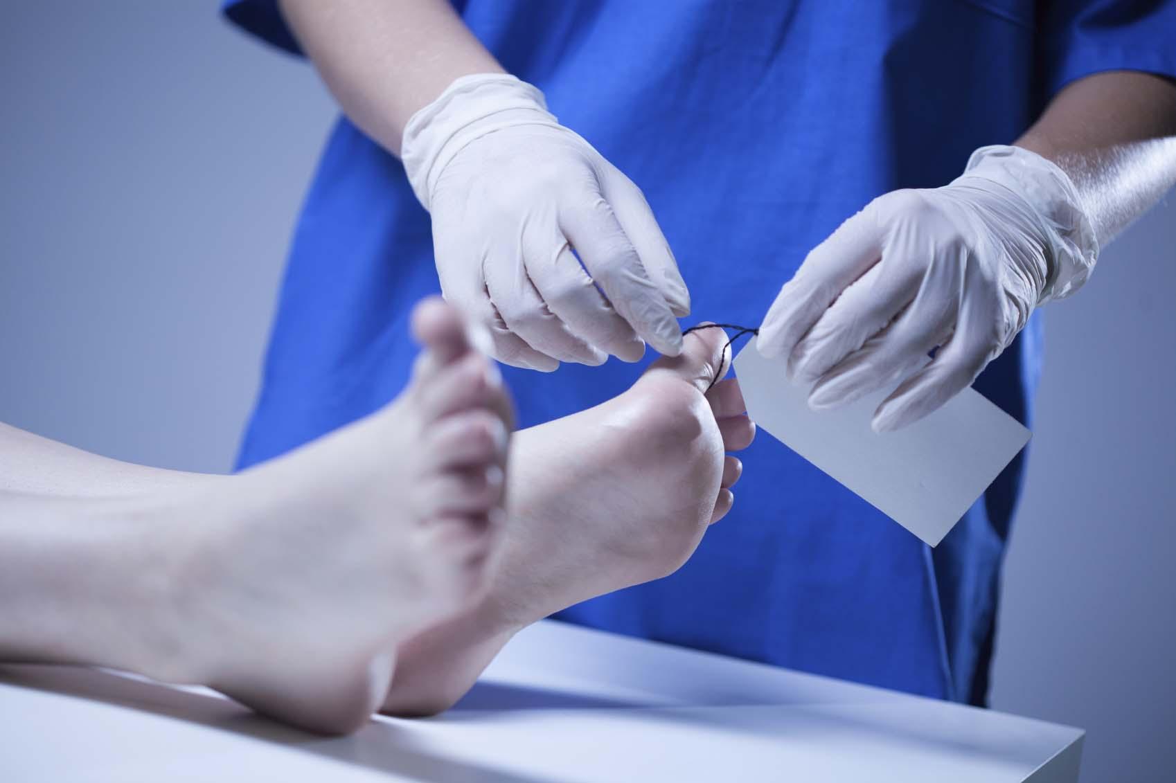 تشريح جسم الانسان الطب الشرعي