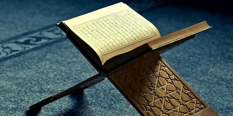 هل قراءة سورة البقرة يومي ا بدعة أم لا زيادة