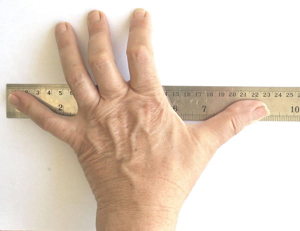 170 سم كم قدم وطريقة التحويل من القدم إلى سم بالأمثلة زيادة