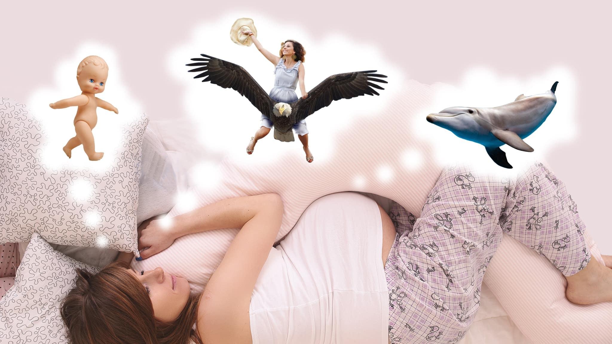 حلم الحامل بالعضو الذكرى للجنين لابن سيرين زيادة
