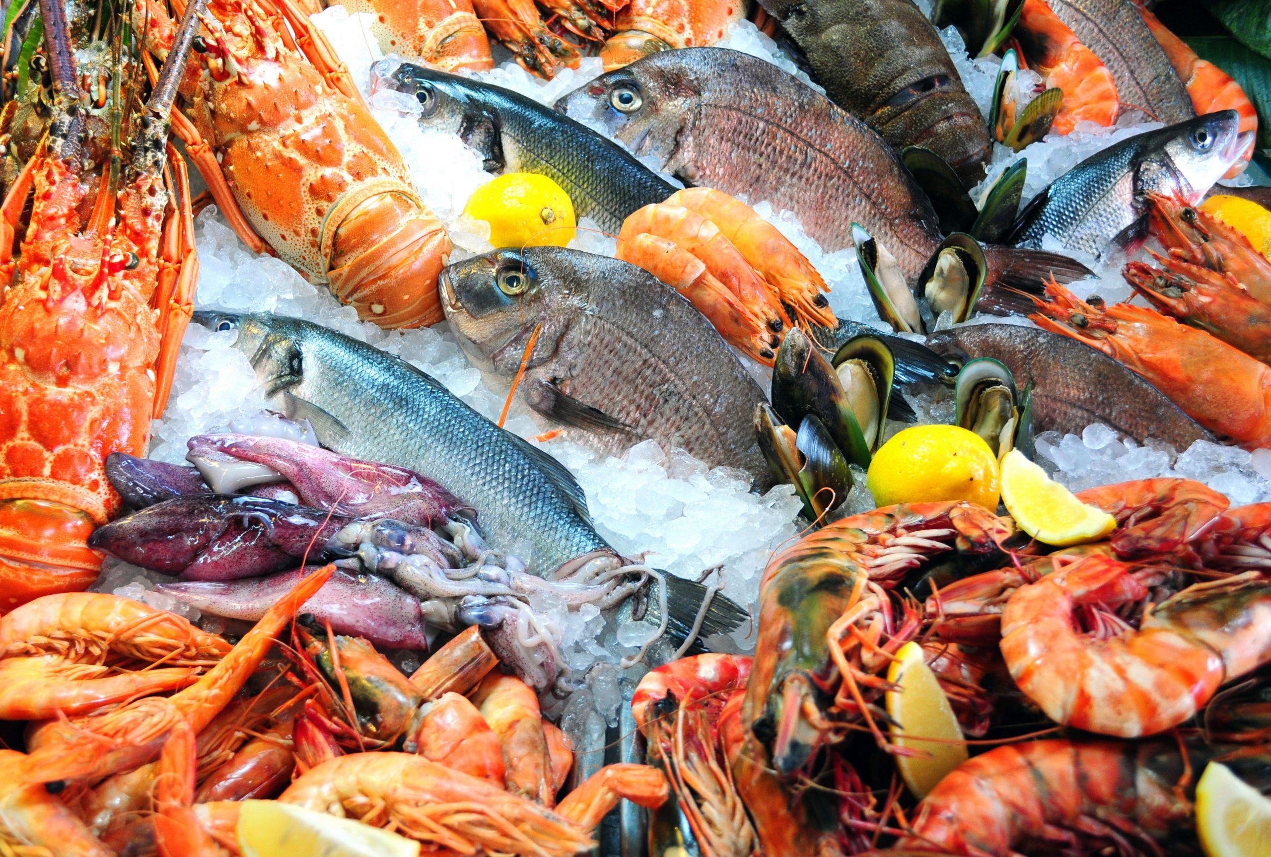 تفسير حلم رؤية بائع سمك في المنام.